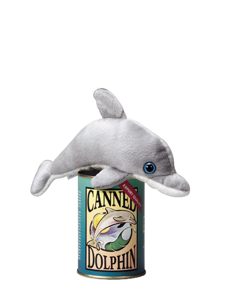 Dolphin – web