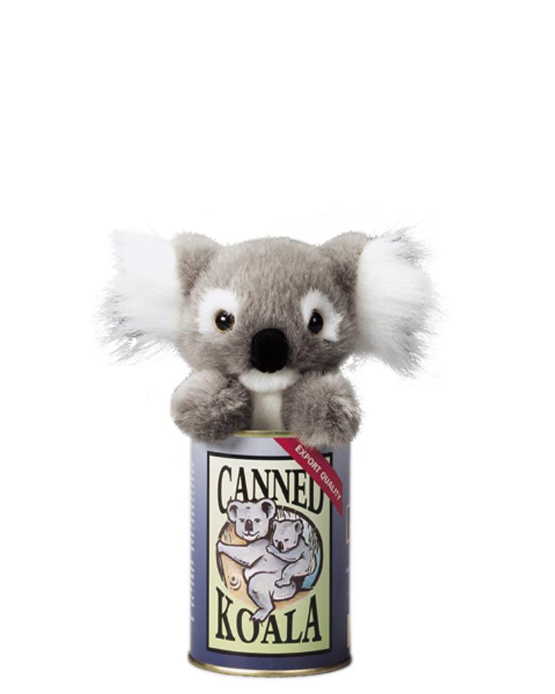 Koala – web